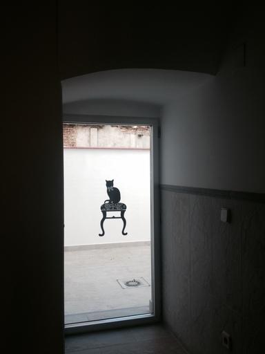 Rehabilitacion Vivienda Carmen Montoya Madrid Despues 01e